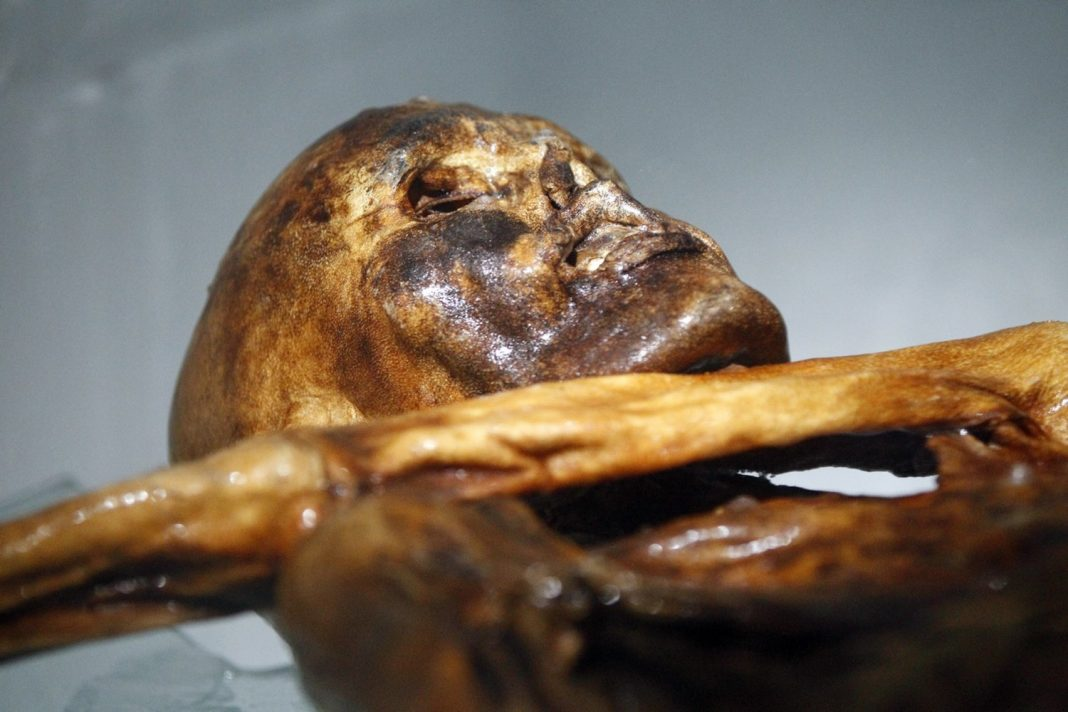 Ötzi the Iceman's Tattoos May Have actually Been a Primitive Kind of Acupuncture