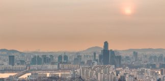 Soot from Air Contamination Found in Placentas of City-Dwelling Women