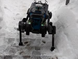 This ANYmal robotic can go almost anywhere video