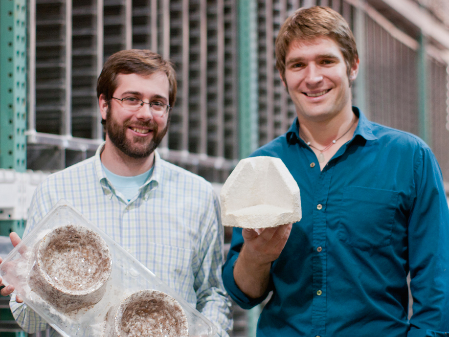 A start-up that turns mushrooms into IKEA product packaging has actually presented a brand-new platform that might alter the method lab-grown meat is made