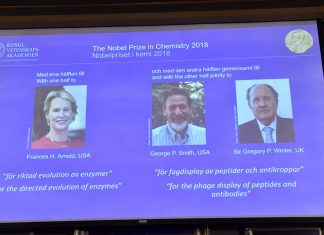 Chemistry Nobel Granted to Researchers for Taking the Reins on Advancement