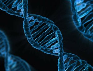 Scientists can now determine DNA we 'shed' to resolve criminal activities