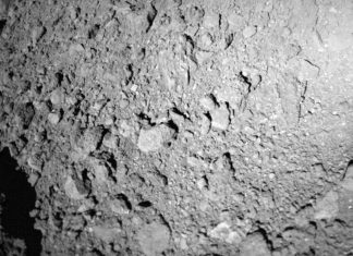 A German-French Hopping Robotic Simply Arrived On the Surface Area of Asteroid Ryugu