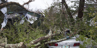 Cyclone Michael compromises to Classification 1 storm, a minimum of 1 dead, numerous thousands without power