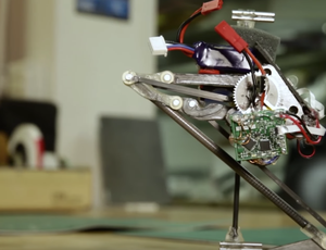Meet Salto, the frightening robotic that hops around like a frog
