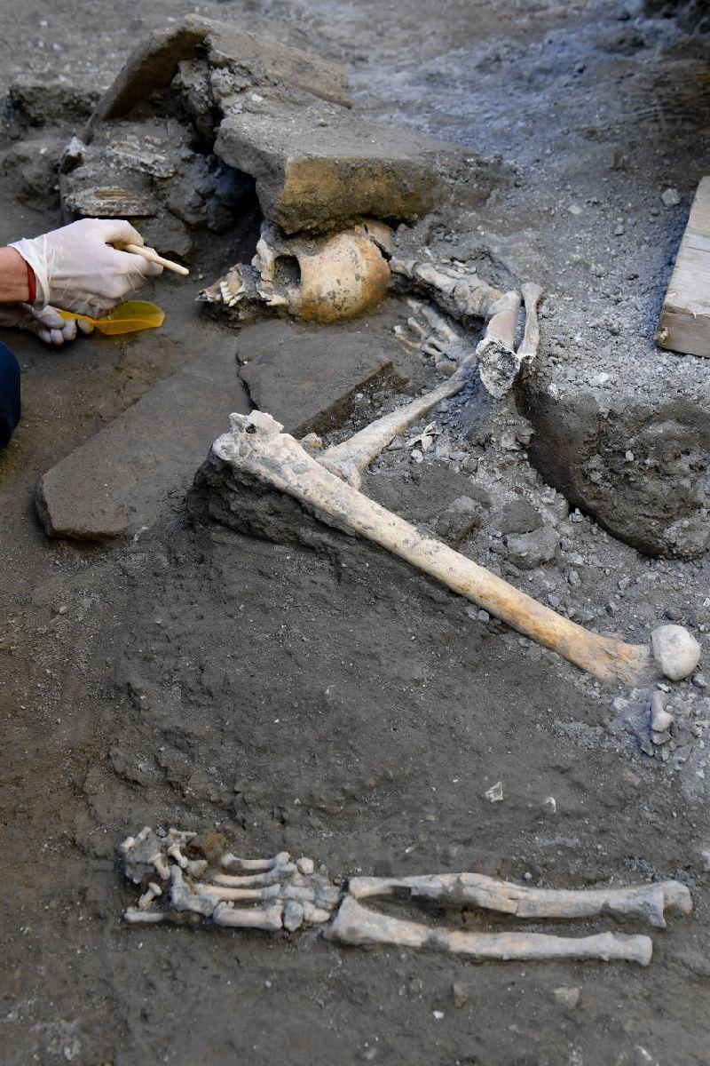 New Skeletons From Pompeii Clarify Human Beings' Action To Catastrophe