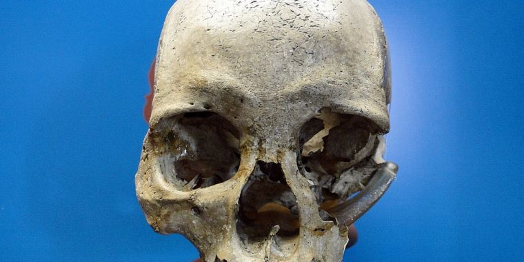 Ancient skull discovered amongst particles in burned Brazilian museum