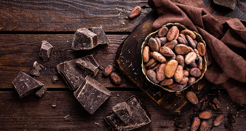 Ancient South Americans tasted chocolate 1,500 years prior to anybody else