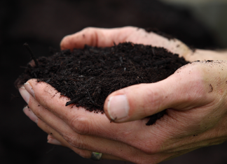 Composting in your home isn't as difficult as you may believe– here's how to do it