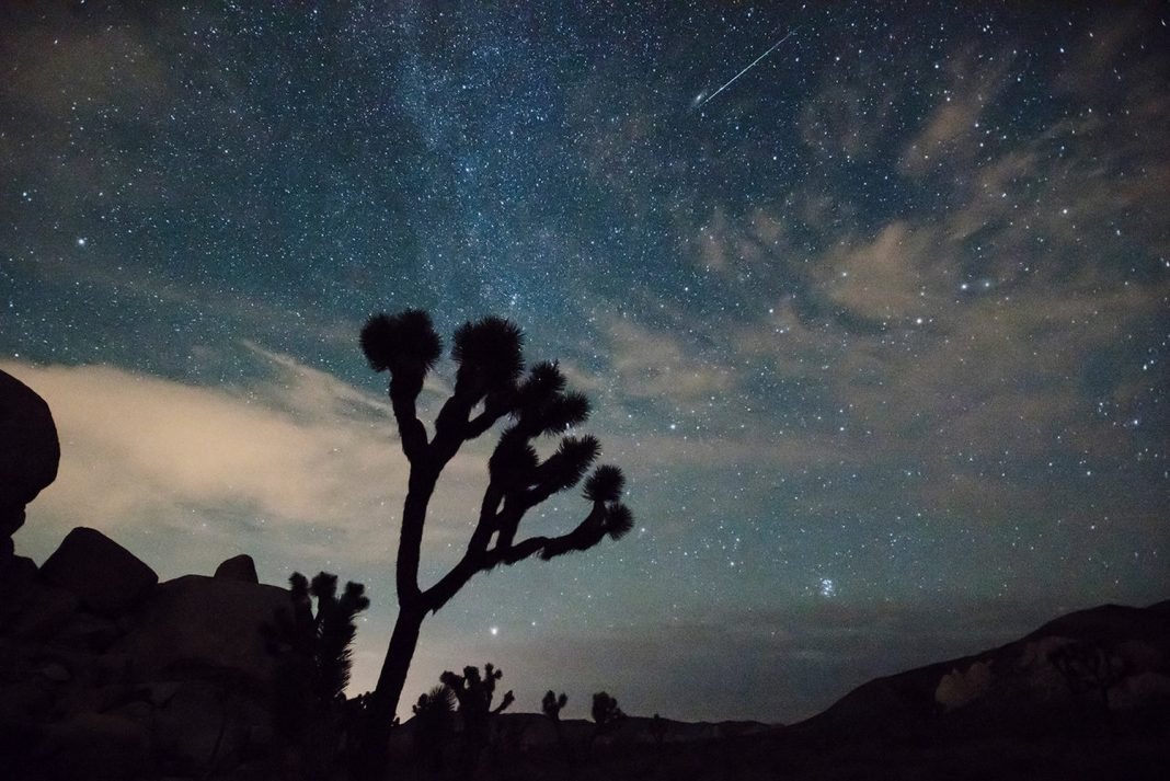 The 2018 Leonid Meteor Shower Peaks This Weekend! Here's What to Anticipate