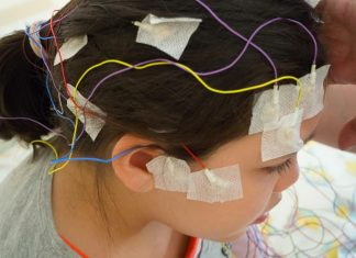 At-Residence Mind Stimulation – What Might Presumably Go Unsuitable?