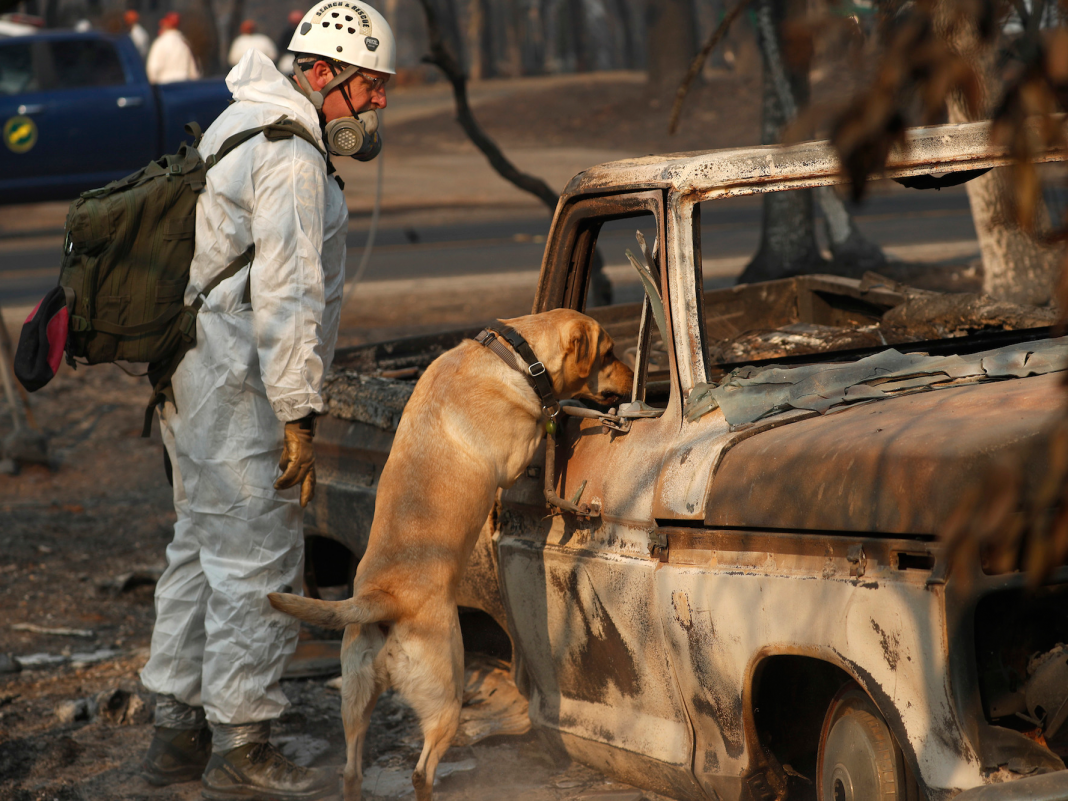 The death toll from California's fires has actually increased to 80– and almost 1,000 individuals are still missing out on