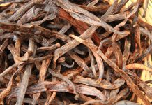 A Bronze Age burial place in Israel exposes the earliest recognized usage of vanilla