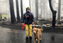The Camp Fire is lastly snuffed out. The blaze eliminated a minimum of 88 individuals.