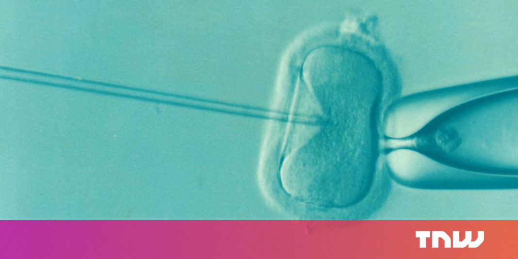 Questionable brand-new test might be utilized to evaluate embryos for intelligence