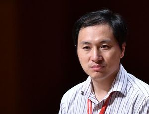 China apparently stops research study on gene-edited infants