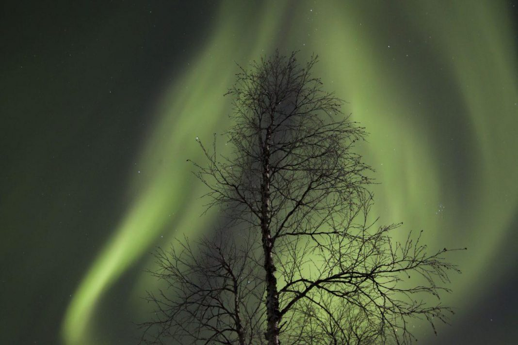 Exposed: The Secret Methods You Required To See (And Make It Through) The Northern Lights