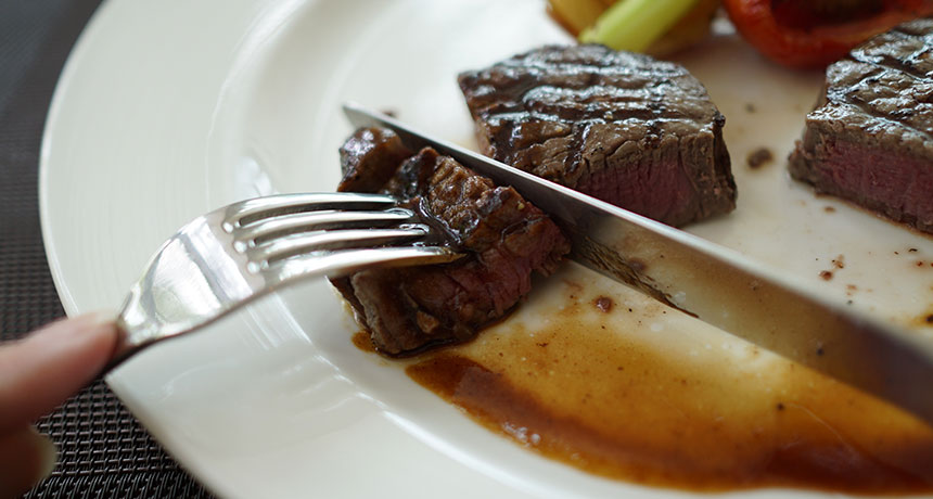 Consuming less protein might assist suppress gut germs's development