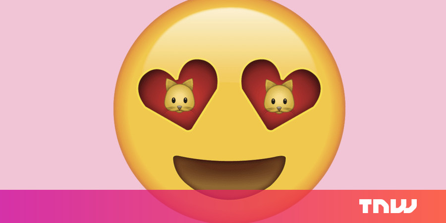 Get more felines on your Instagram feed by cheating the algorithm