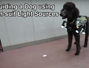 Scientists in Japan made a remote-controlled pet utilizing an unique vest