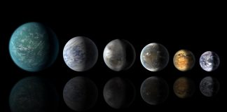 Exoplanets Will Required Both Continents and Oceans to Type Complex Life