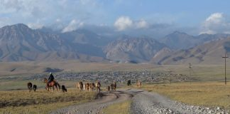 To Adjust to an Altering Environment, Kyrgyzstan Restores Its Nomadic Past