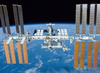 Antibiotic Resistant Germs has actually been Discovered on the Spaceport station's Toilet