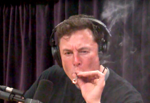 'That was not proper habits': NASA roasted Elon Musk for cigarette smoking weed survive on the web