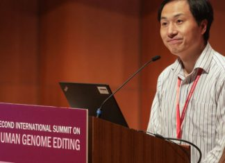 Researchers, ethicists knock choices behind gene-edited twins