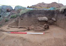 Bones of Handless Male Discovered Near Strange Middle Ages Dolphin Burial