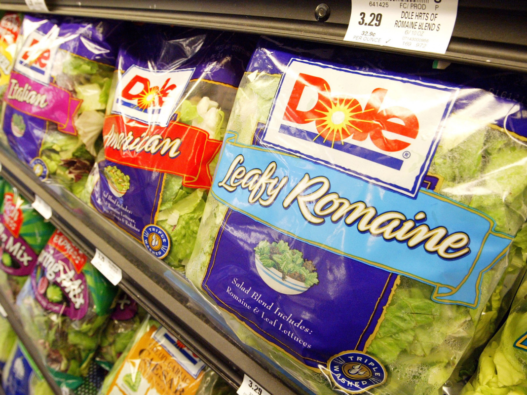 An E. coli break out from romaine lettuce has actually sickened a minimum of 79 individuals in 15 states– here's how to prevent getting ill