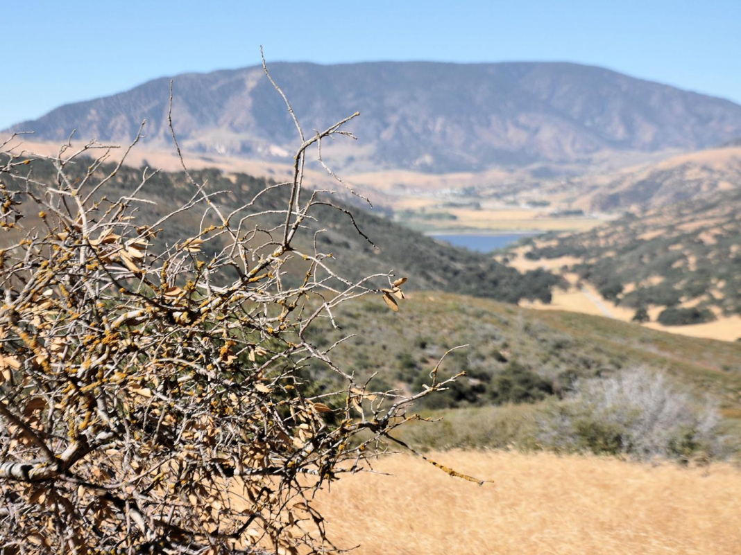 Los Angeles simply green-lighted an advancement on land that's 8 times the size of San Francisco, and researchers are cautioning it remains in wildfire area
