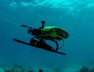 Killer drones will now provide coral children in the Great Barrier Reef
