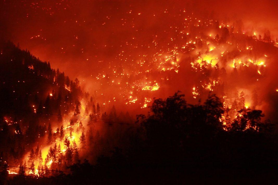How Do Wildfires Start?