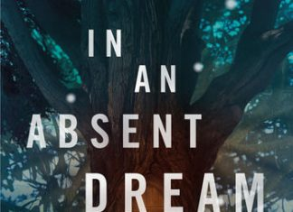 Want Lewis or Rowling-like worlds however more horrible? Snag In a Missing Dream