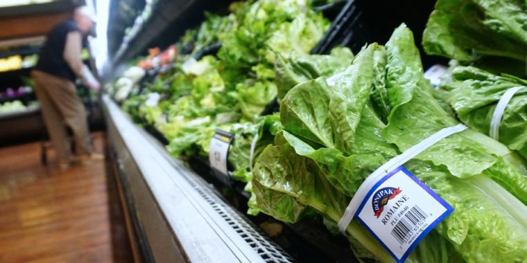 FDA's regular food assessments stopped in the middle of federal government shutdown