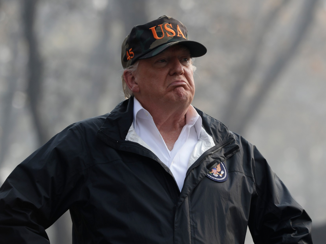 Trump stated 'raking and cleaning up' forests would avoid more disastrous wildfires. However the federal government shutdown is stopping the Forest Service from doing simply that.