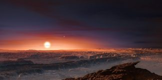 Habitable Planets Around Red Dwarf Stars May not get Enough Photons to Assistance Plant Life