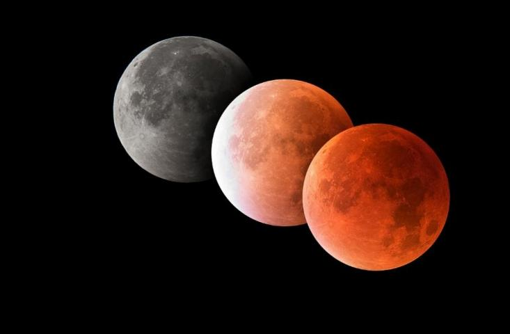 Precisely When You Can See A 100% Pink Moon Throughout Sunday's 'Tremendous Wolf Blood Moon' Whole Lunar Eclipse