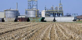 United States appeals court states California can set its own Low Carbon Fuel Requirement