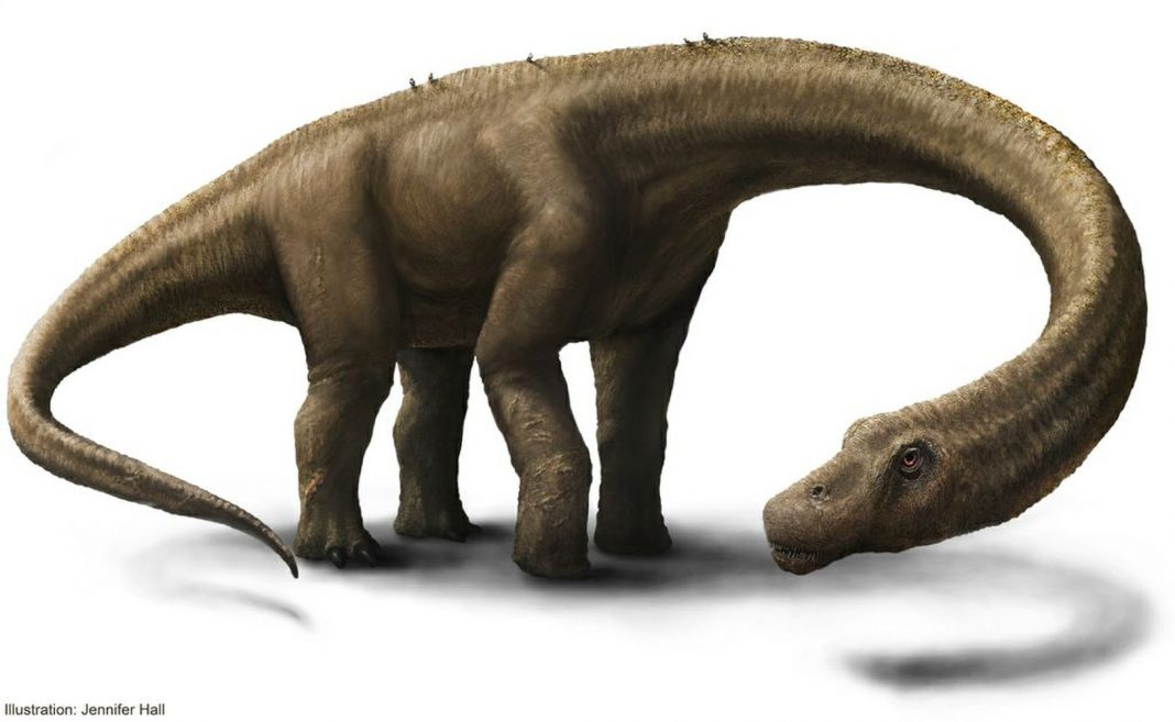 What's the World's Largest Dinosaur?