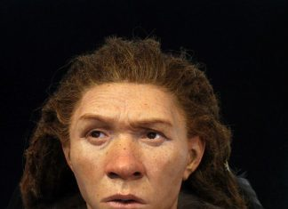 Deals With Re-Created of Ancient Europeans, Consisting Of Neanderthal Female and Cro-Magnon Guy