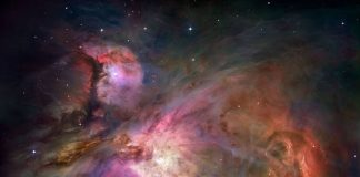 Baby Stars in the Orion Nebula Prevent Other Stars from Forming