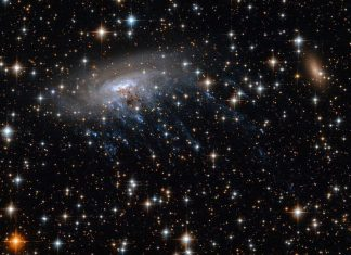 Galaxy Clusters Are Where Galaxies Like The Galaxy Go To Pass Away