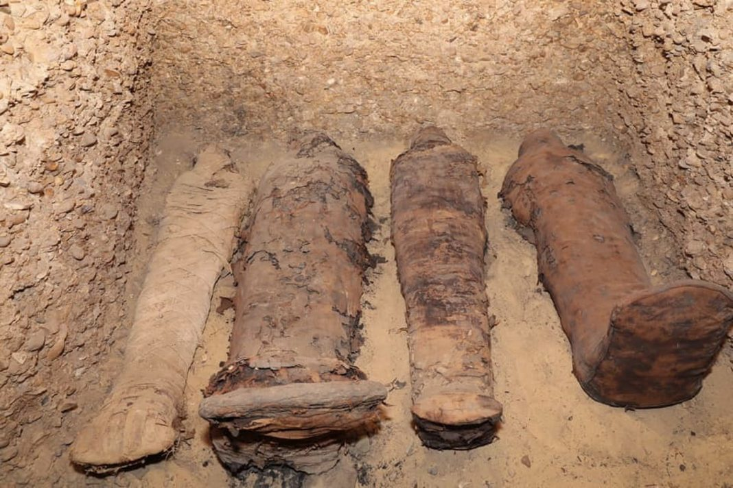 Labyrinth of Tombs in Egypt Holds Numerous Mummies Going Back 2,300 Years