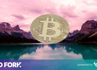 A guide on QuadrigaCX, the curious $134 M cryptocurrency secret