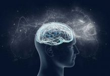 Brain scans translate an evasive signature of awareness