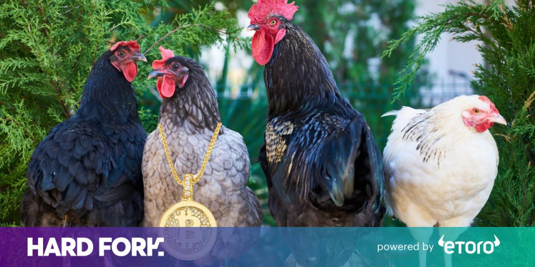 Why did the chicken cross the roadway? To get fed by blockchain