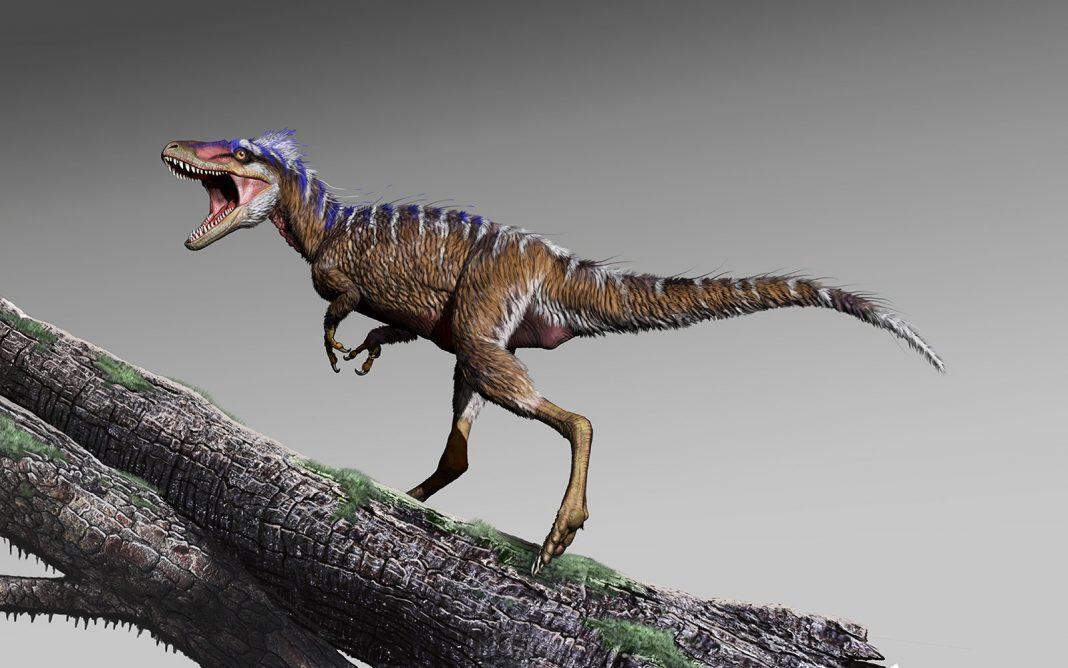 Mighty T. Rex Began As Adorable, Deer-Size Dino