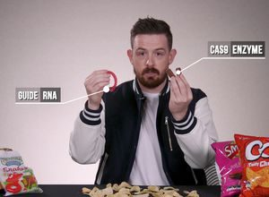 CRISPR discussed with crisps (and various treats) video